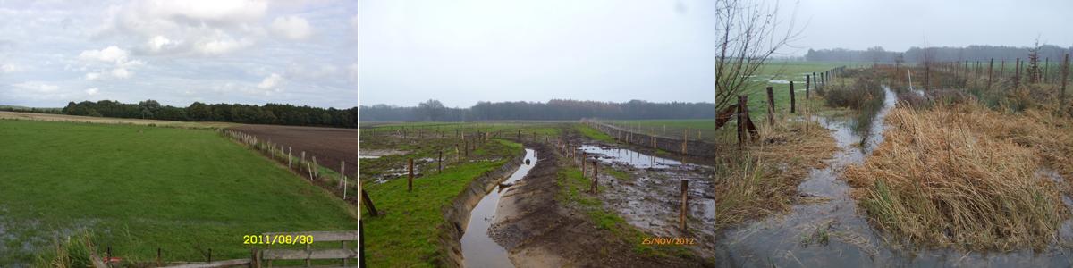 Ködnergrund Entwicklung Kopie